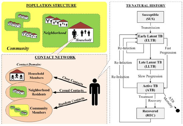 Agent Based Simulation in Epidemiology - disease transmission dynamics simulation model